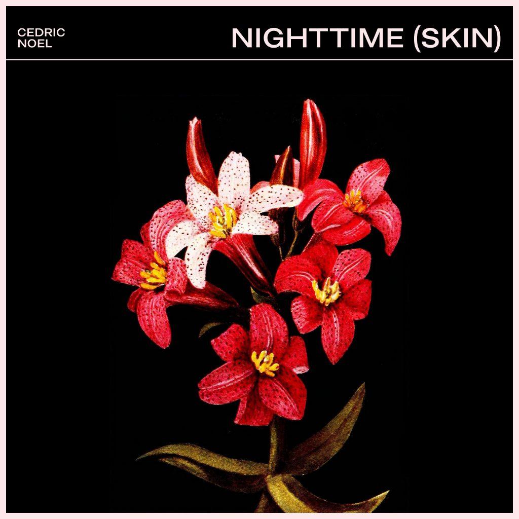 Nighttime (Skin)